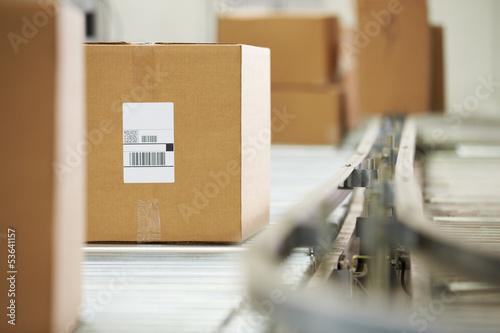 Cuadros en Lienzo Goods On Conveyor Belt In Distribution Warehouse
