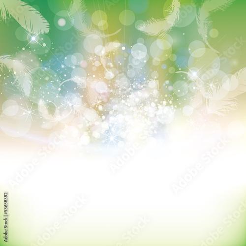 Fotografie, Obraz  feather background