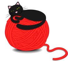 Cute Kitten Sleeping On A Tangle Of Yarn