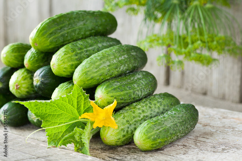 Photo  cucumbers with yellow flower, leaves and dill on wooden backgrou