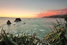 Coastal Landscape Of West Coast, New Zealand