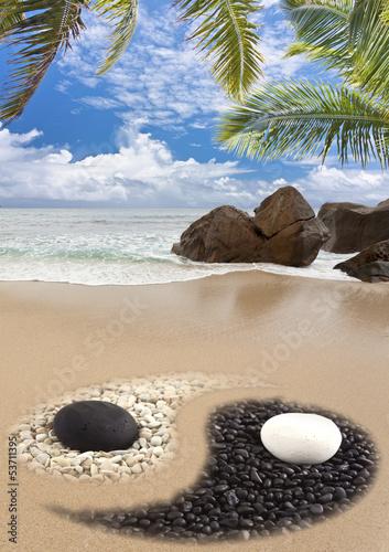 plage yin yang aux Seychelles - 53711395