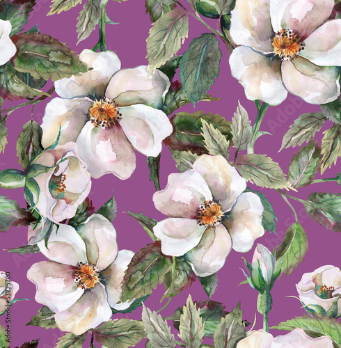 Naklejka dekoracyjna Wild Roses Seamless Pattern