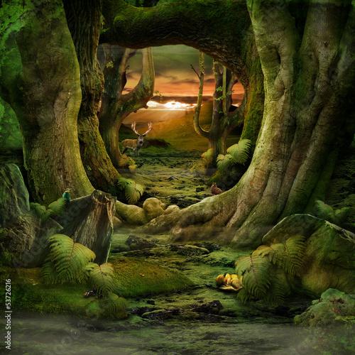 Green Paradise - 53726216