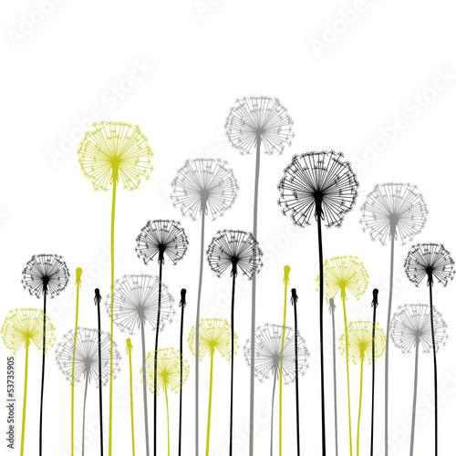 Fotografie, Obraz floral background, dandelion