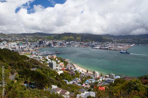 Wellington Skyline