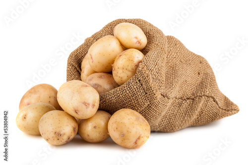Fotografering Ripe potato in burlap sack