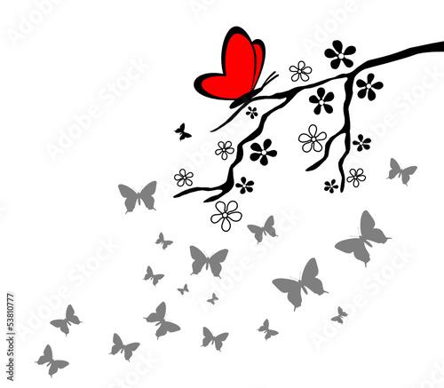 oddzial-kwiaty-motyl