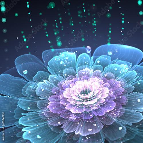 fioletowy-fraktal-kwiat-z-kroplami-wody