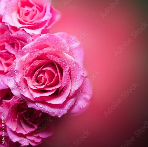Roses Art Design...