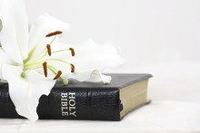 Holy Bible With White Lily And...