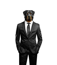 Man With Dog Head Isolated