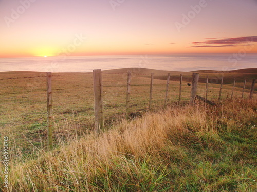 Foto op Canvas Nieuw Zeeland Morning landscape in New Zealand