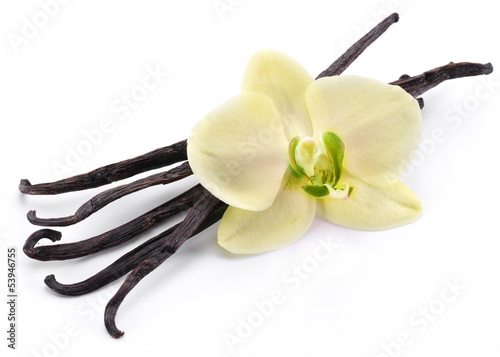 laski-waniliowe-z-kwiatkiem