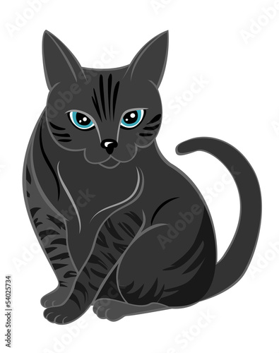 Printed kitchen splashbacks Cats Concentrated cat looking at you