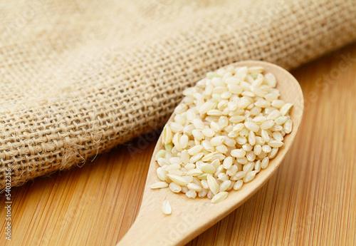Fotografia, Obraz  Uncooked rice on spoon