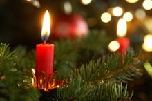 Burning Candle On Christmas Tree.