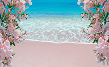 Flowers And Pink Shore