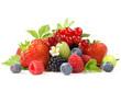 canvas print picture - Beeren - Verschiedene Beerenfrüchte mit Blätter und Blüten