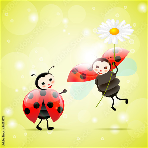 Foto op Canvas Lieveheersbeestjes two ladybugs with a daisy