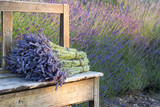 Fototapeta Lavender - Bouquets on lavenders on a wooden old bench