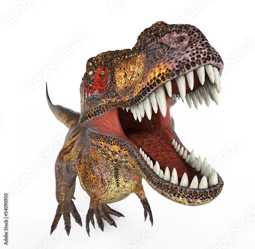 tygrys-t-rex