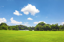 Green Park Outdoor With Blue S...