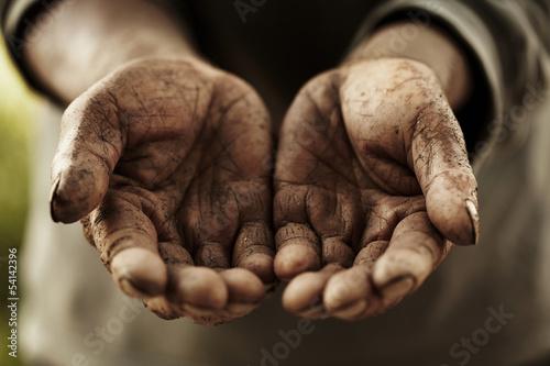 farmer hands. Billede på lærred