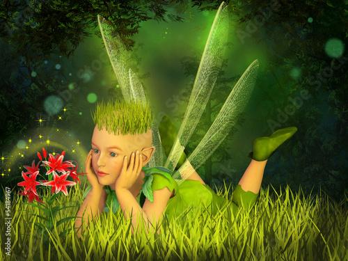 La pose en embrasure Fées, elfes Elf in the fairy forest