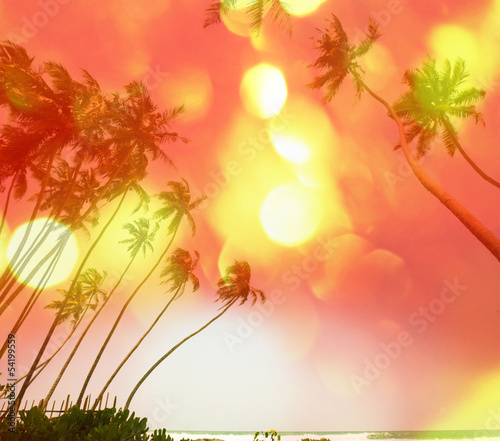 Canvas Prints Countryside Tropical beach