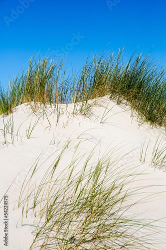 Dünenlandschaft auf Norderney, Deutschland © narttekg