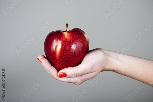 Fototapeta Czerwone jabłko na dłoniu obraz
