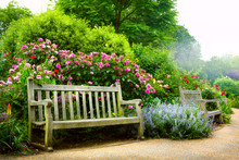 Art Bench And Flowers In The M...