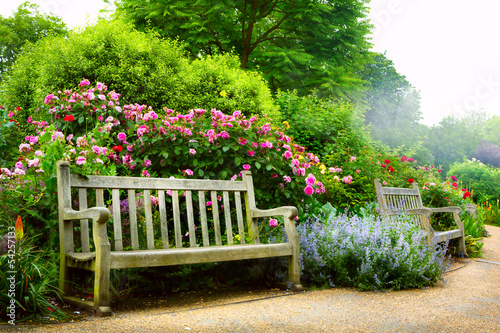 Foto op Canvas Tuin Art bench and flowers in the morning in an English park