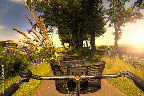 Fototapeta cycling in sunset obraz na płótnie