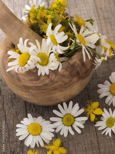 Staande foto Lelietje van dalen chamomile and st john's wort