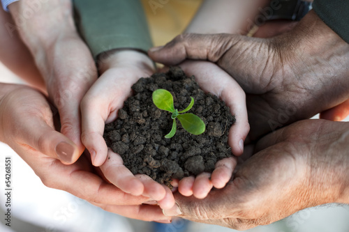 farmers family holding a fresh young plant