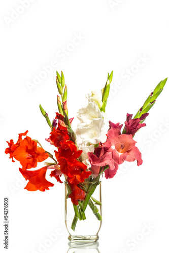red and white gladioli in a vase Billede på lærred