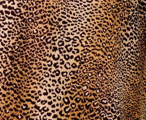 Fototapeta Leopard background