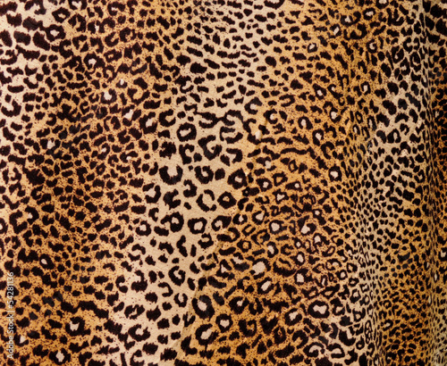 Deurstickers Luipaard Leopard background