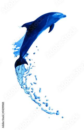 Staande foto Dolfijnen Dolphin High Jump