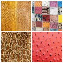 Various Fine Leather Samples C...
