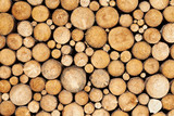 Pine timber background