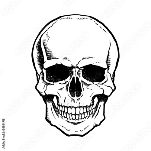 Black and white human skull with a lower jaw. Canvas Print