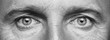 canvas print picture - Panorama of men's eyes