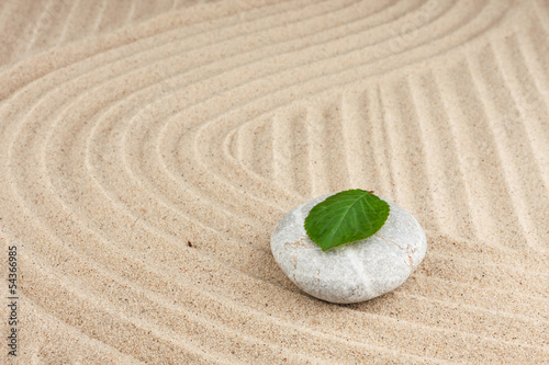Tuinposter Stenen in het Zand Leaf on a rock in the sand