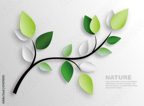 Cuadros en Lienzo branch and leaves