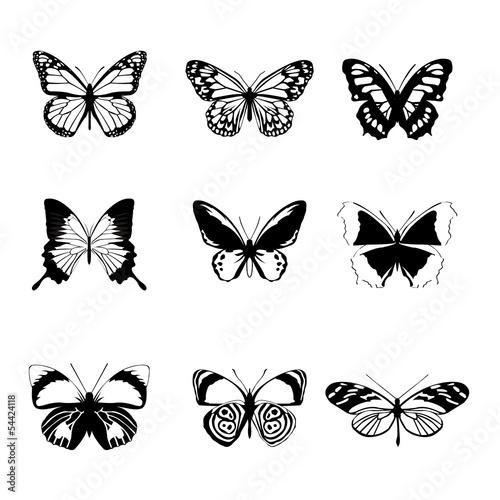 Photo sur Toile Papillons dans Grunge Vector black white butterfly set