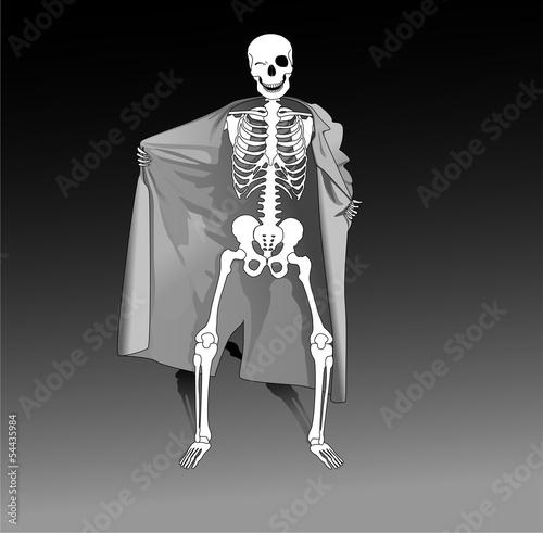 Photographie Squelette exhibitionniste Halloween