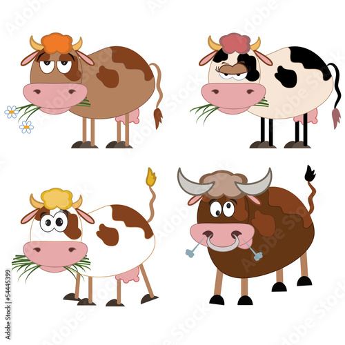 In de dag Boerderij Cows and bull.